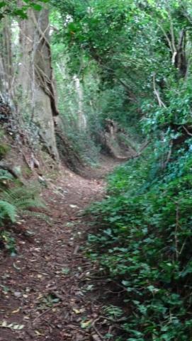 Hewlin's Lane.