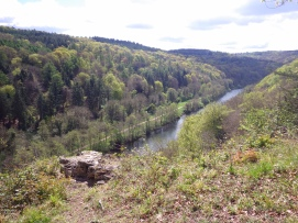 Below Symonds Yat