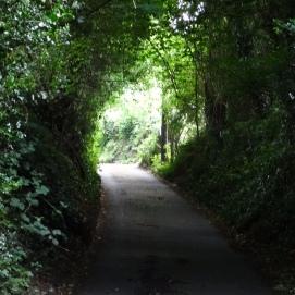 Well Vale Lane, Crockers Ash.