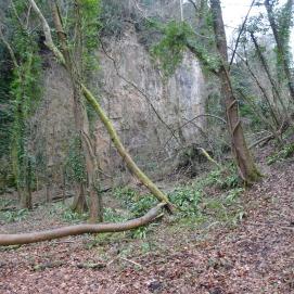 Woodland Trust kiln & quary (4)