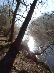 Beside the Wye in winter time.