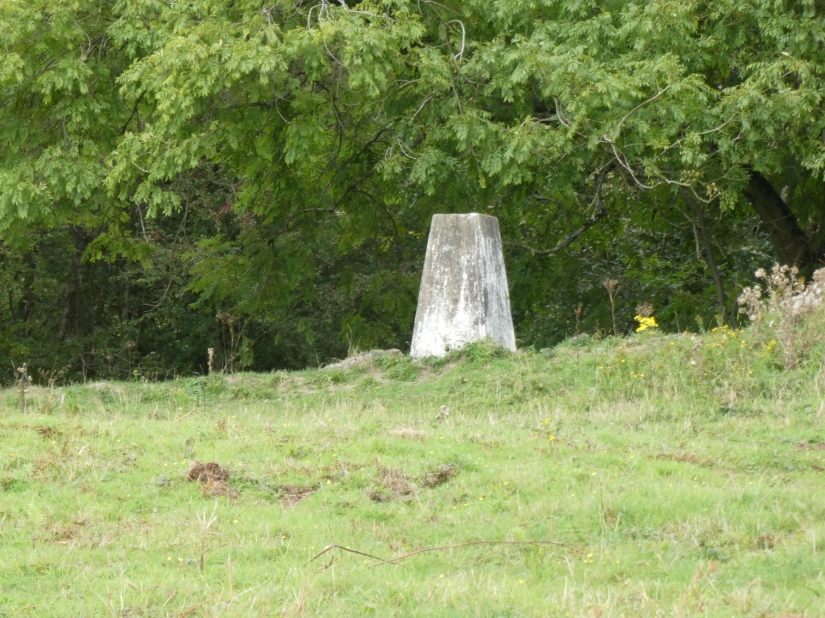 Trig' point.