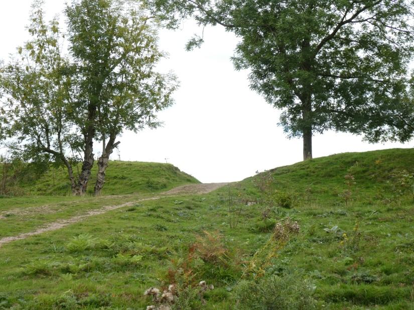 Little doward hill fort walk 2 (95)