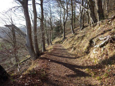 Doward walk 4 (14)