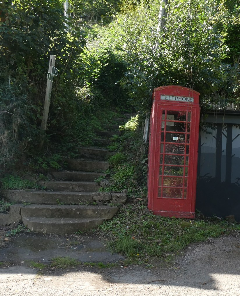 Symonds Yat West phone box.
